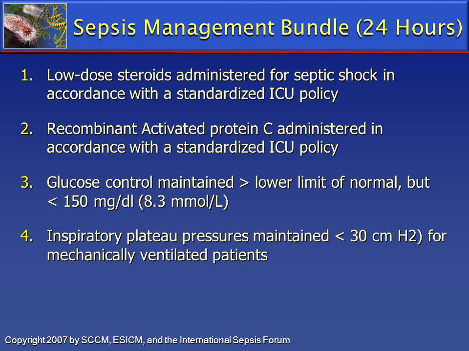 Sepsis Management Bundle (24 Hours)