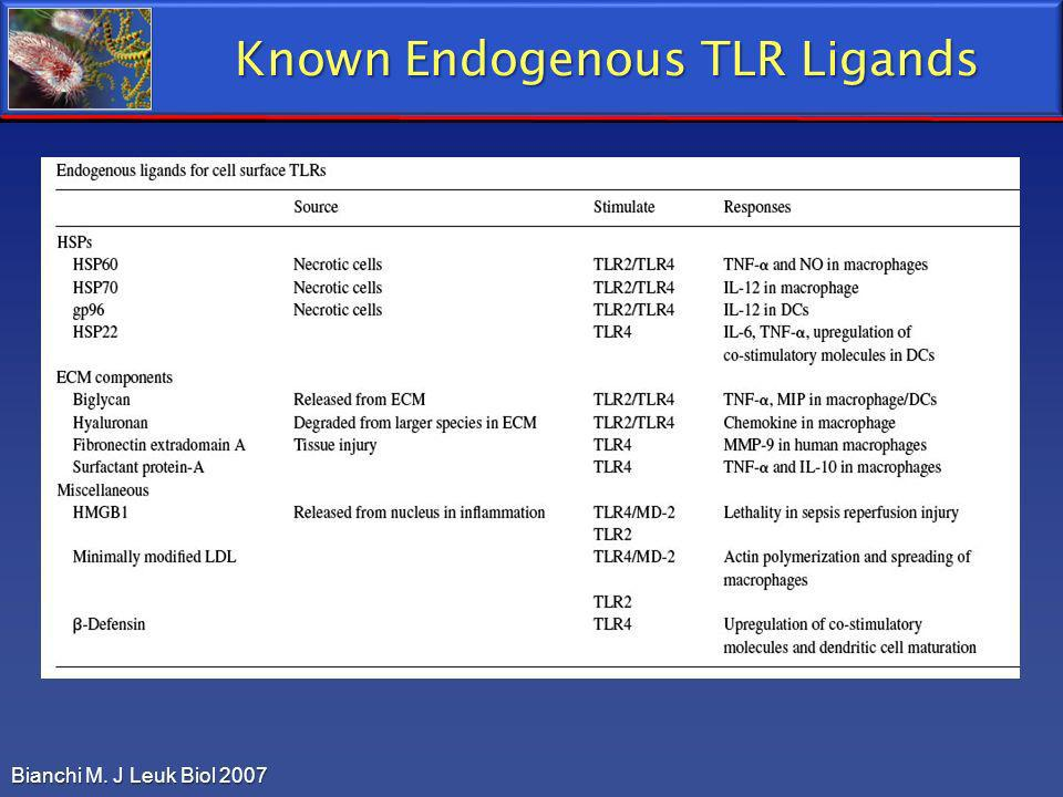 Known Endogenous TLR Ligands