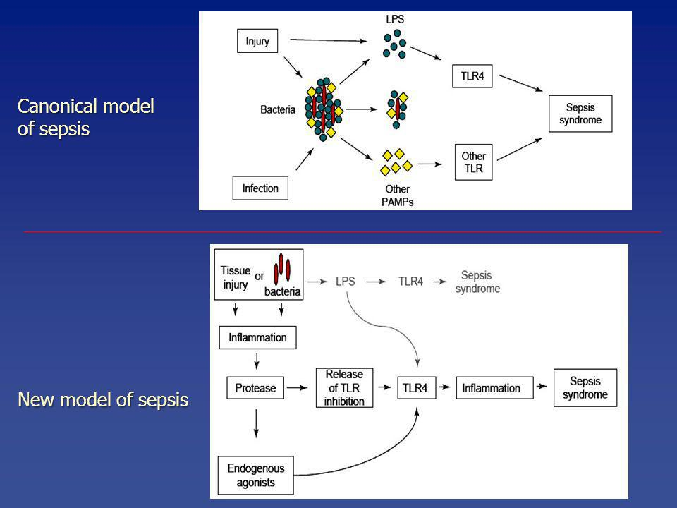 Canonical model of sepsis New model of sepsis