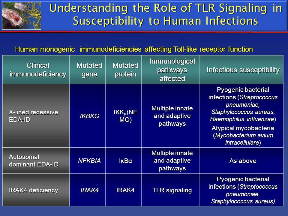 Understanding the Role of TLR Signaling in Susceptibility to Human Infections