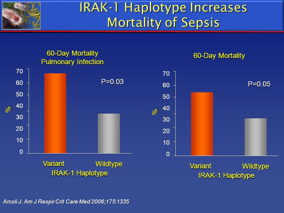 IRAK-1 Haplotype Increases