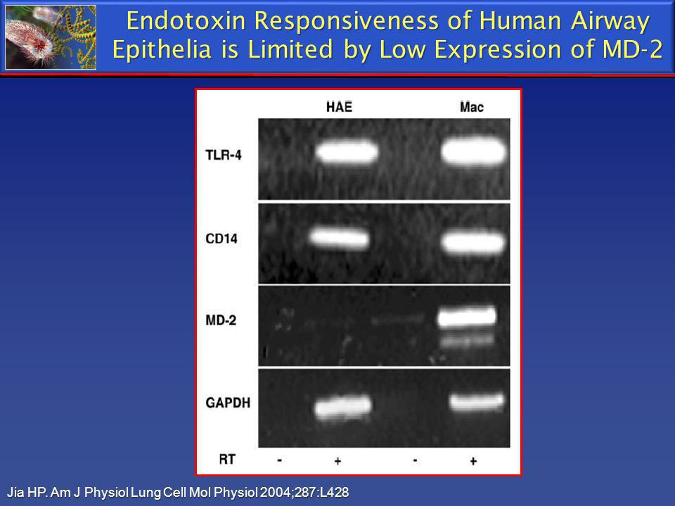 Endotoxin Responsiveness of Human Airway Epithelia is Limited by Low Expression of MD-2