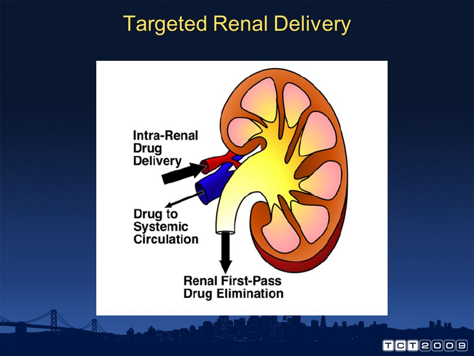 Targeted Renal Delivery