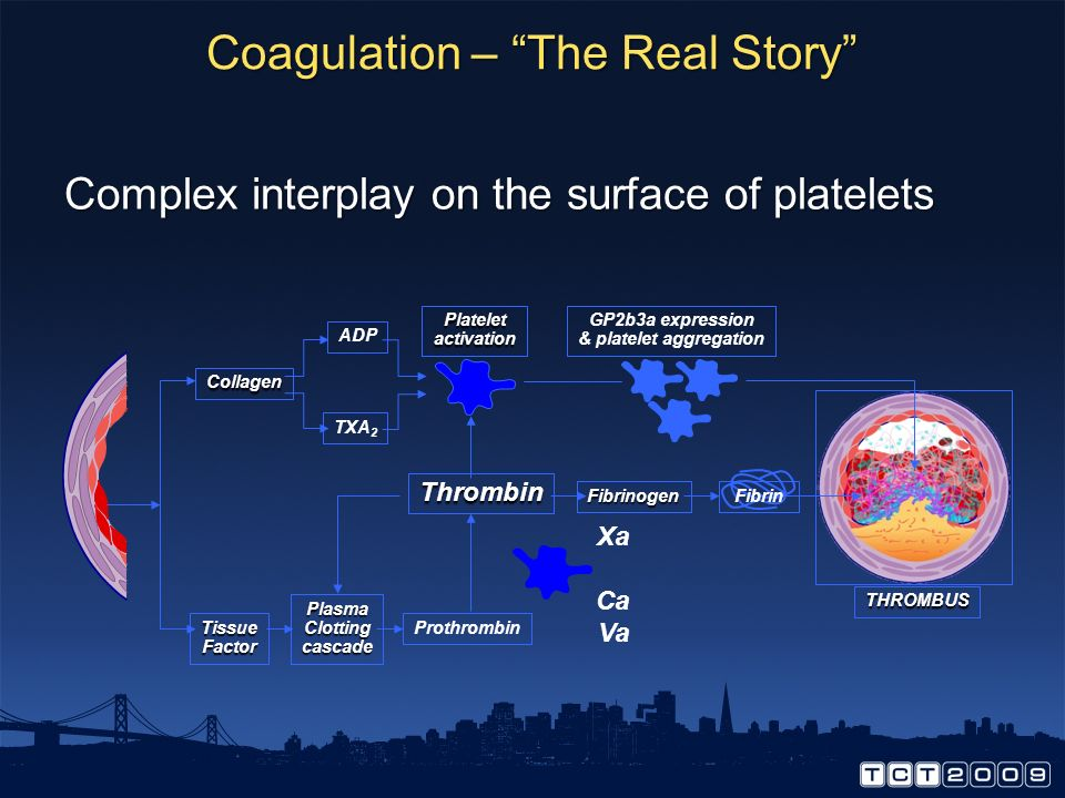 Coagulation – The Real Story