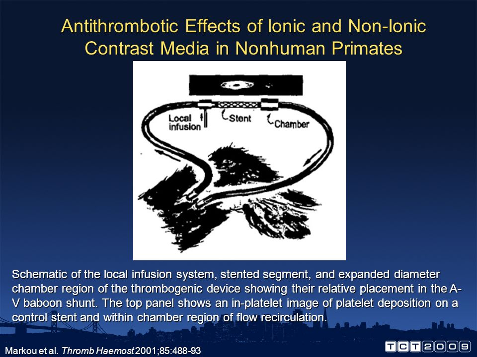 Antithrombotic Effects of Ionic and Non-Ionic Contrast Media in Nonhuman Primates
