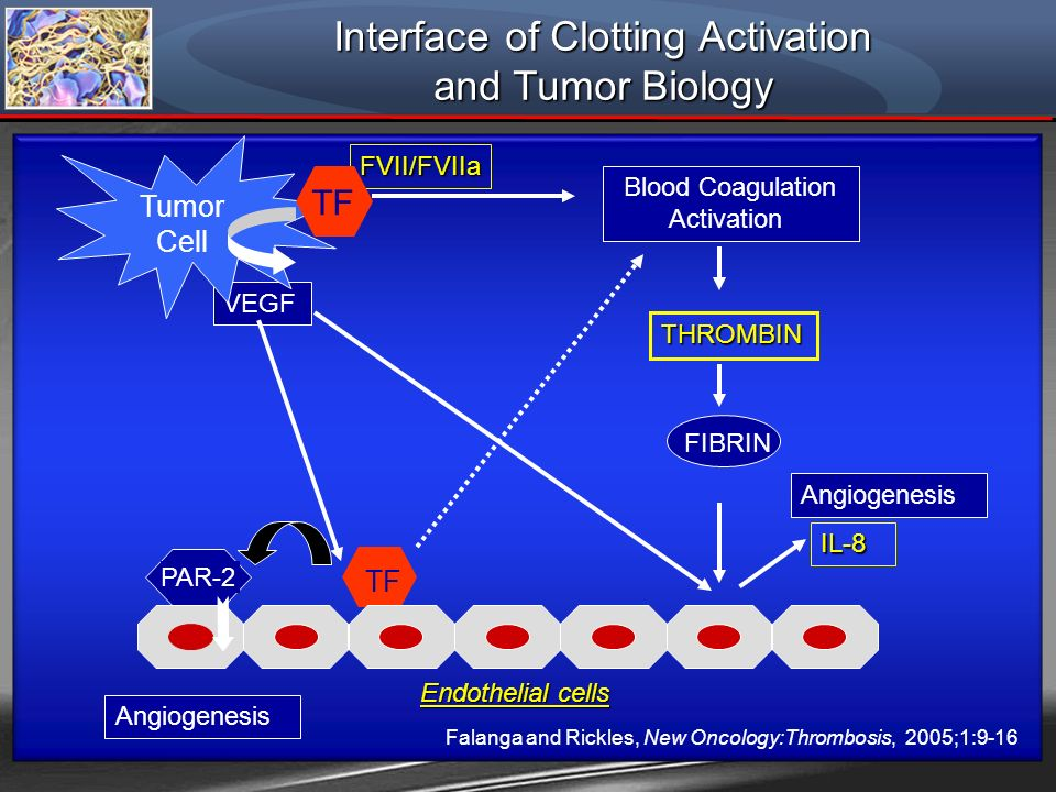 Interface of Clotting Activation