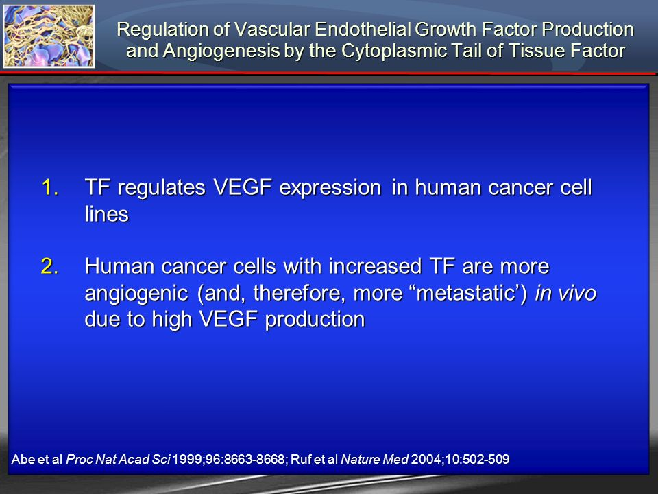 TF regulates VEGF expression in human cancer cell lines