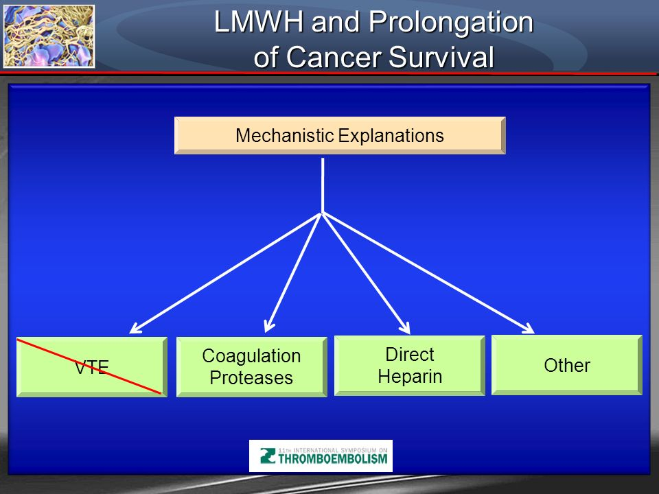 LMWH and Prolongation of Cancer Survival Mechanistic Explanations