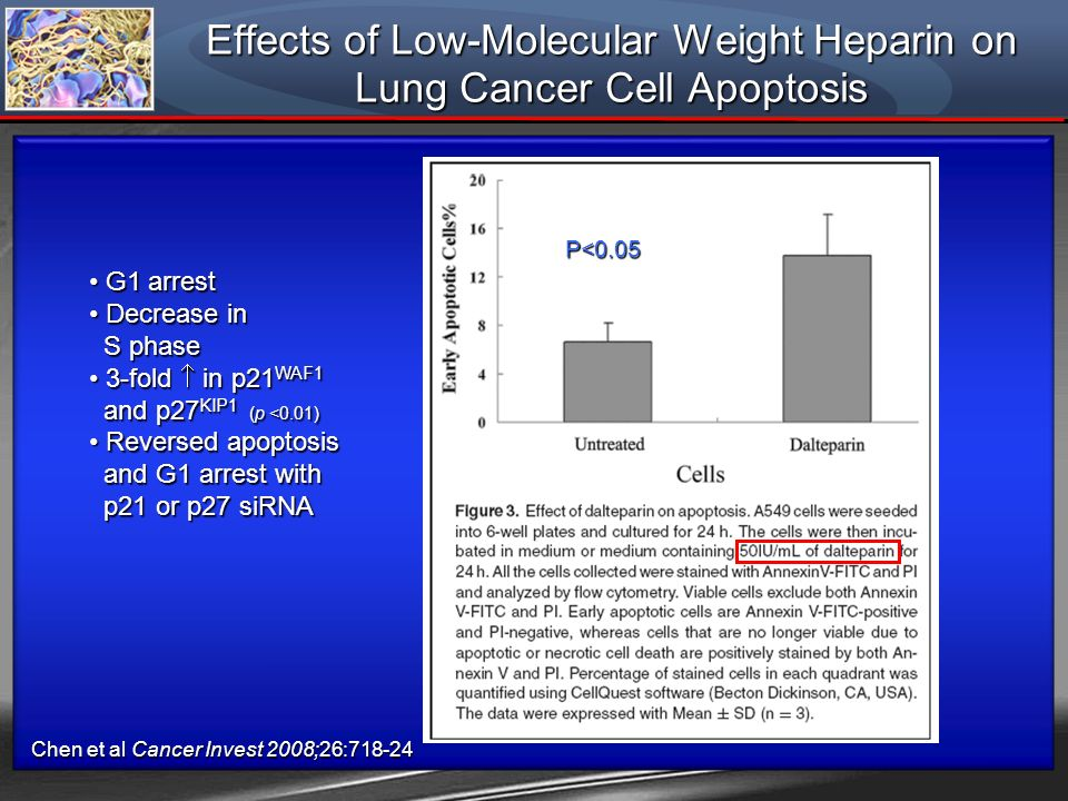 Effects of Low-Molecular Weight Heparin on Lung Cancer Cell Apoptosis
