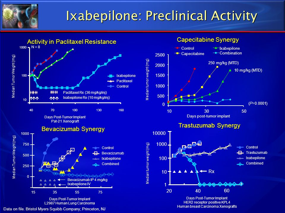 Ixabepilone: Preclinical Activity