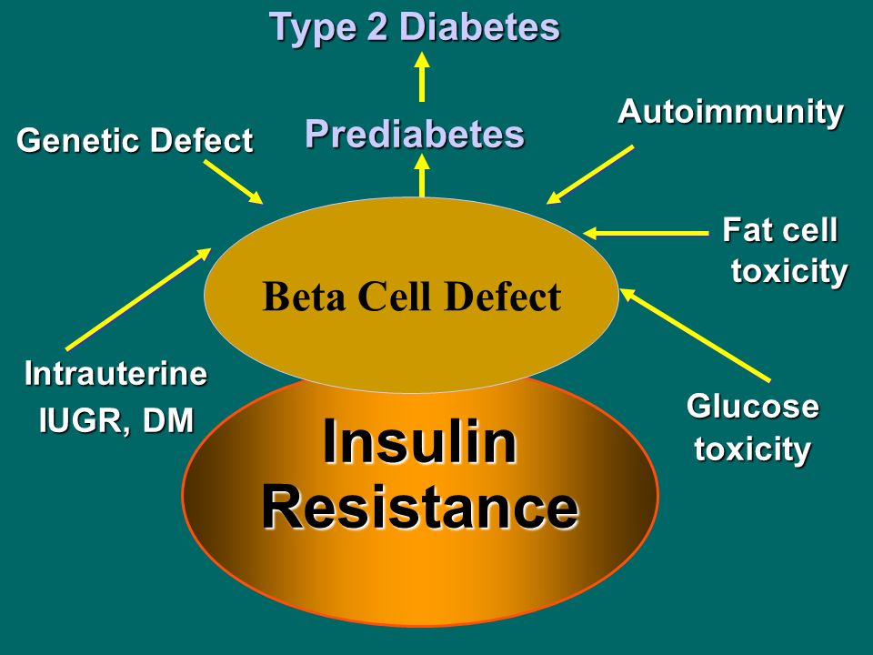 Insulin Resistance Beta Cell Defect Type 2 Diabetes Prediabetes
