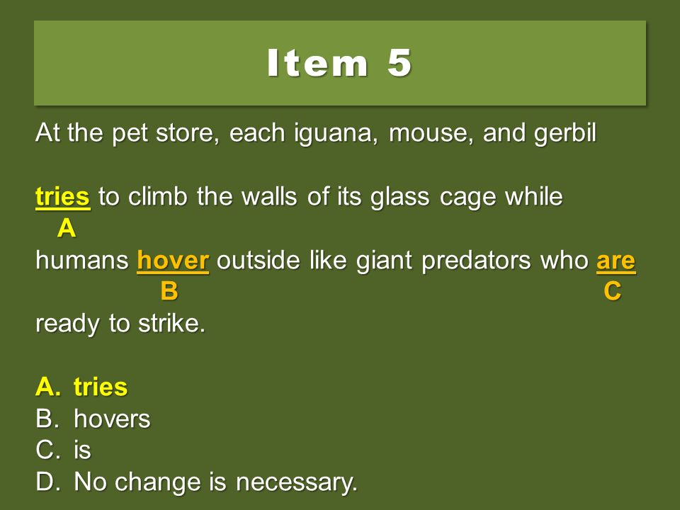 Item 5 At the pet store, each iguana, mouse, and gerbil