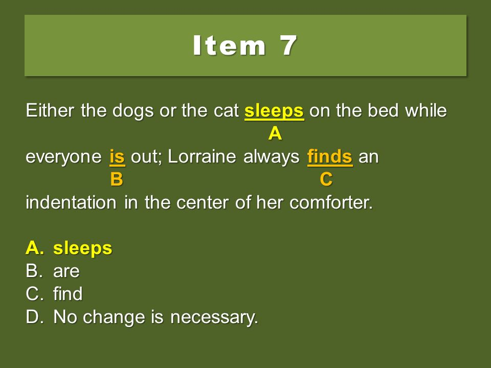 Item 7 Either the dogs or the cat sleeps on the bed while A