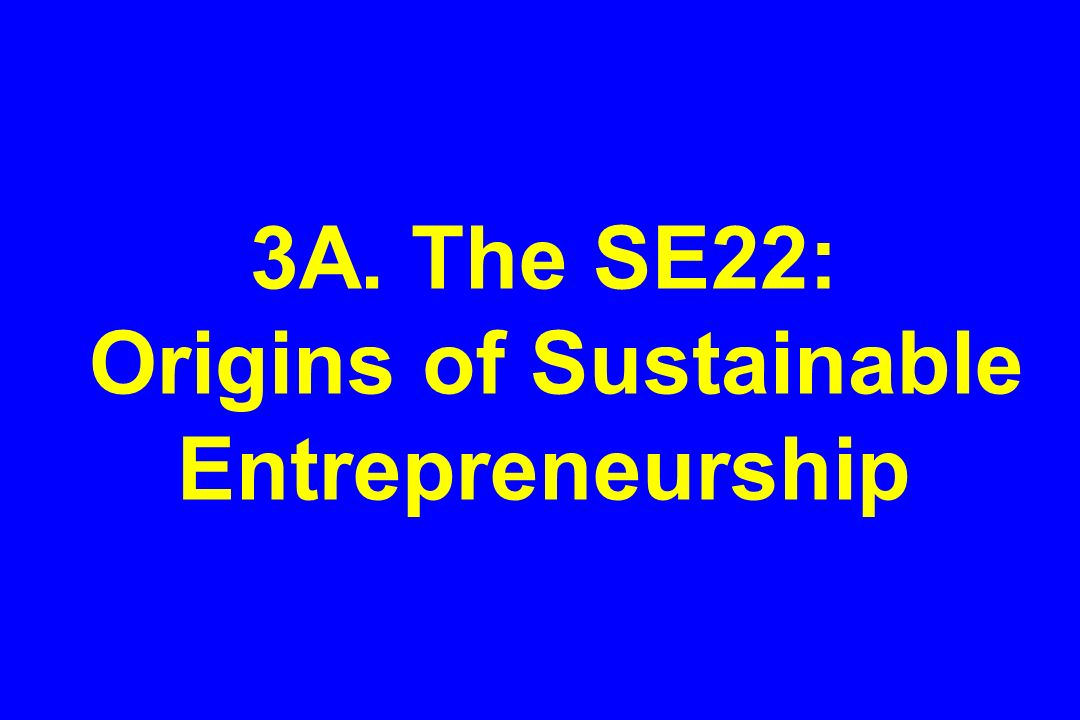 3A. The SE22: Origins of Sustainable Entrepreneurship