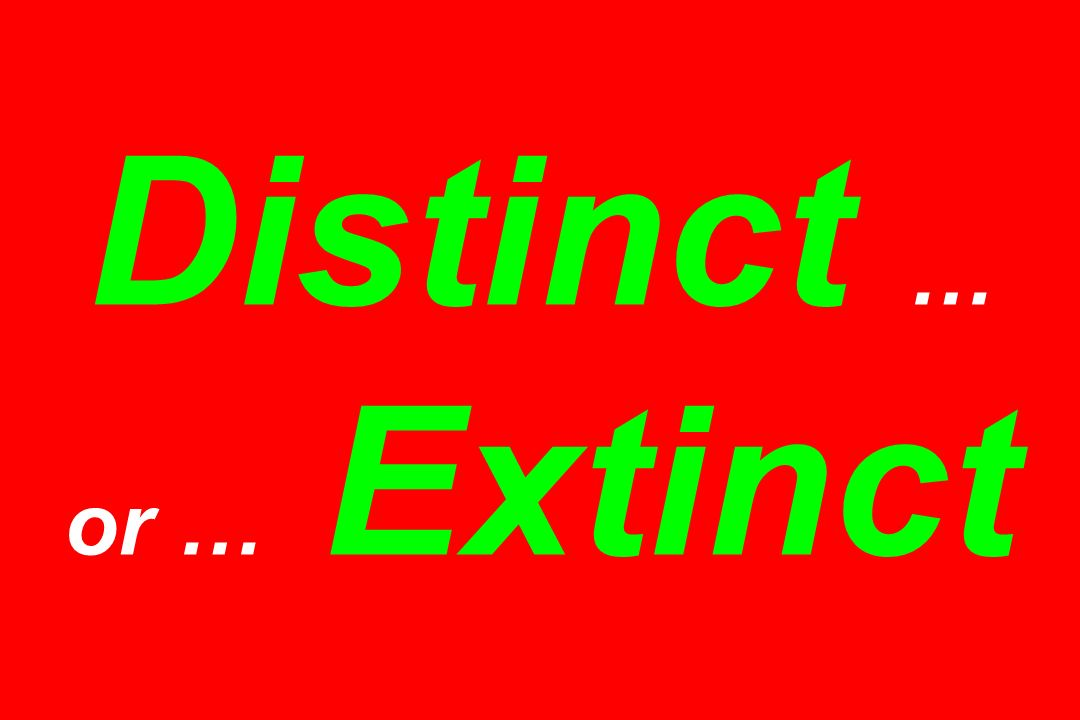 Distinct … or … Extinct