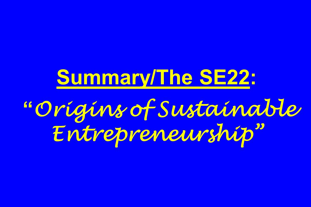 Summary/The SE22: Origins of Sustainable Entrepreneurship