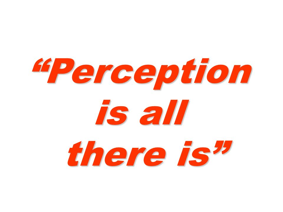 Perception is all there is