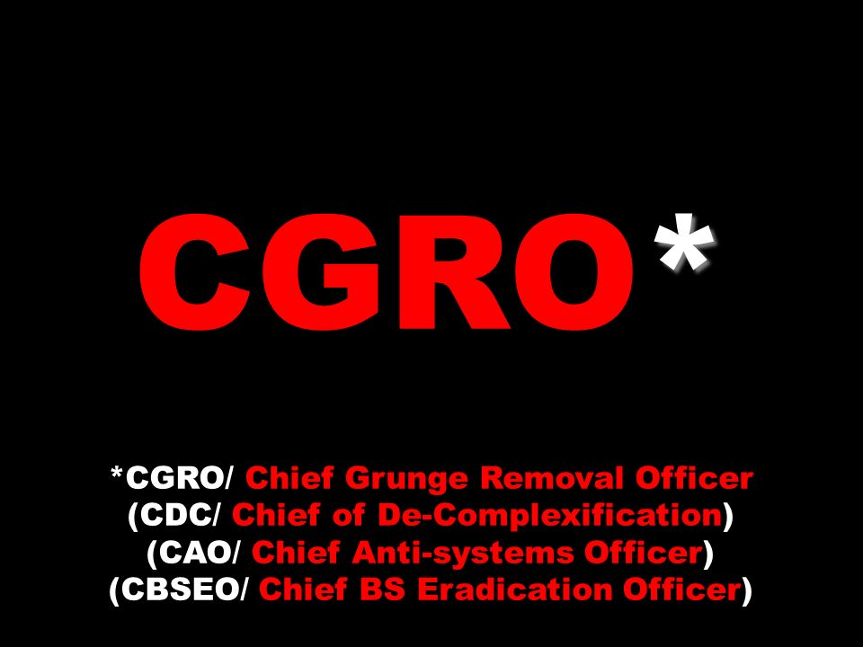 CGRO* *CGRO/ Chief Grunge Removal Officer