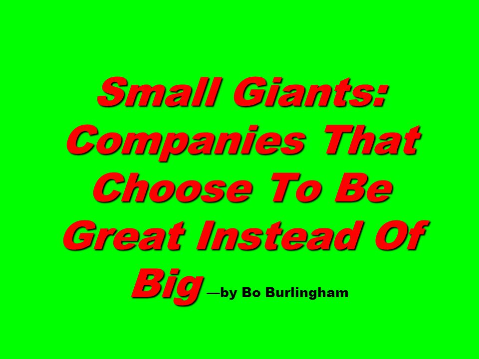 Small Giants: Companies That Choose To Be Great Instead Of Big —by Bo Burlingham