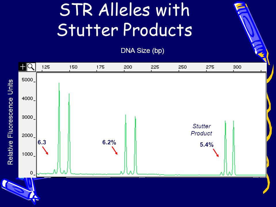 STR Alleles with Stutter Products