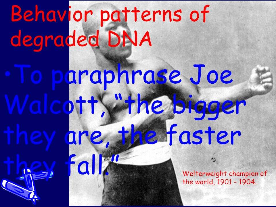 Behavior patterns of degraded DNA