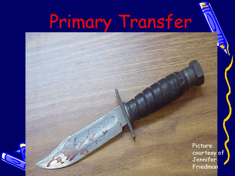 Primary Transfer Picture courtesy of Jennifer Friedman