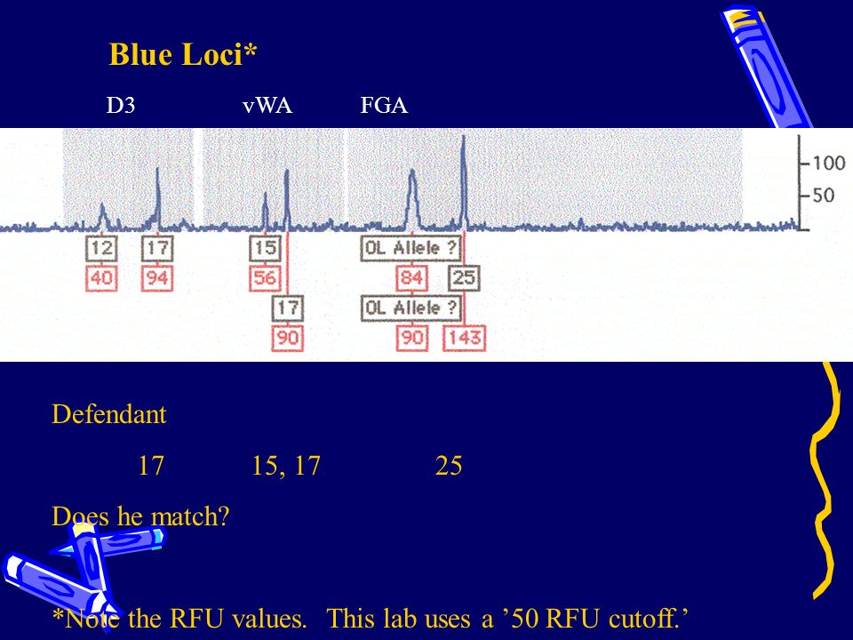 Blue Loci* Defendant 17 15, 17 25 Does he match