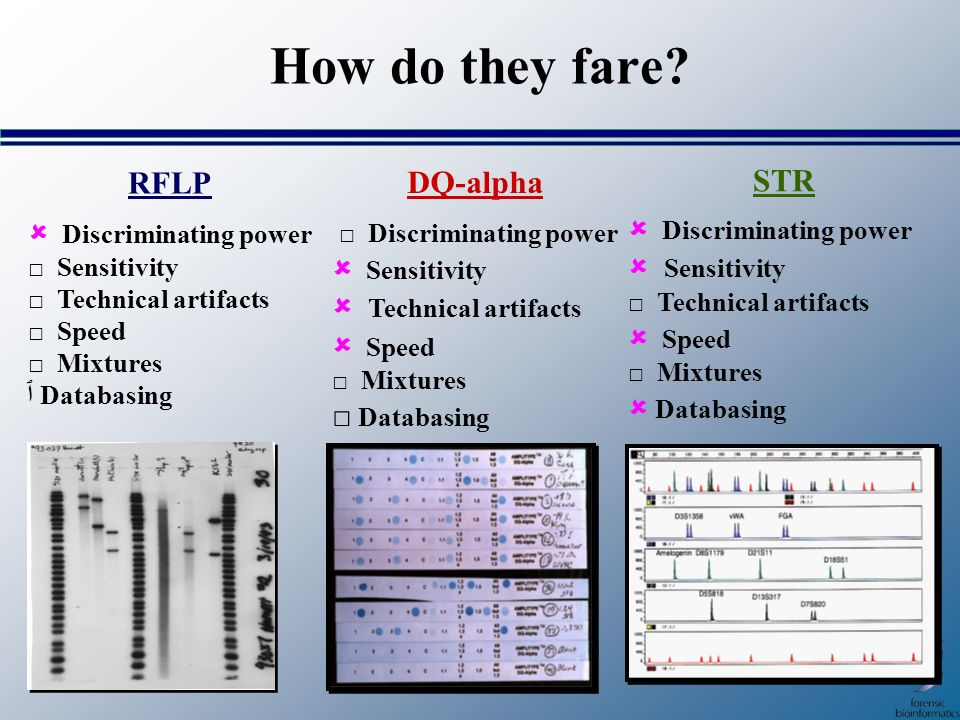 How do they fare RFLP DQ-alpha STR  Discriminating power