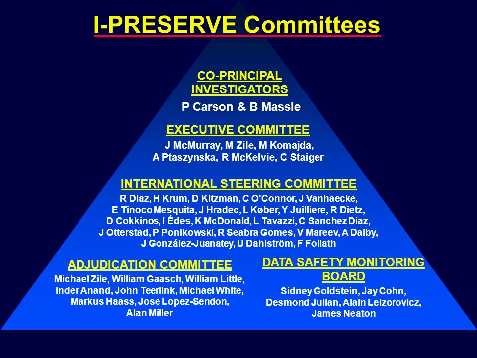 I-PRESERVE Committees