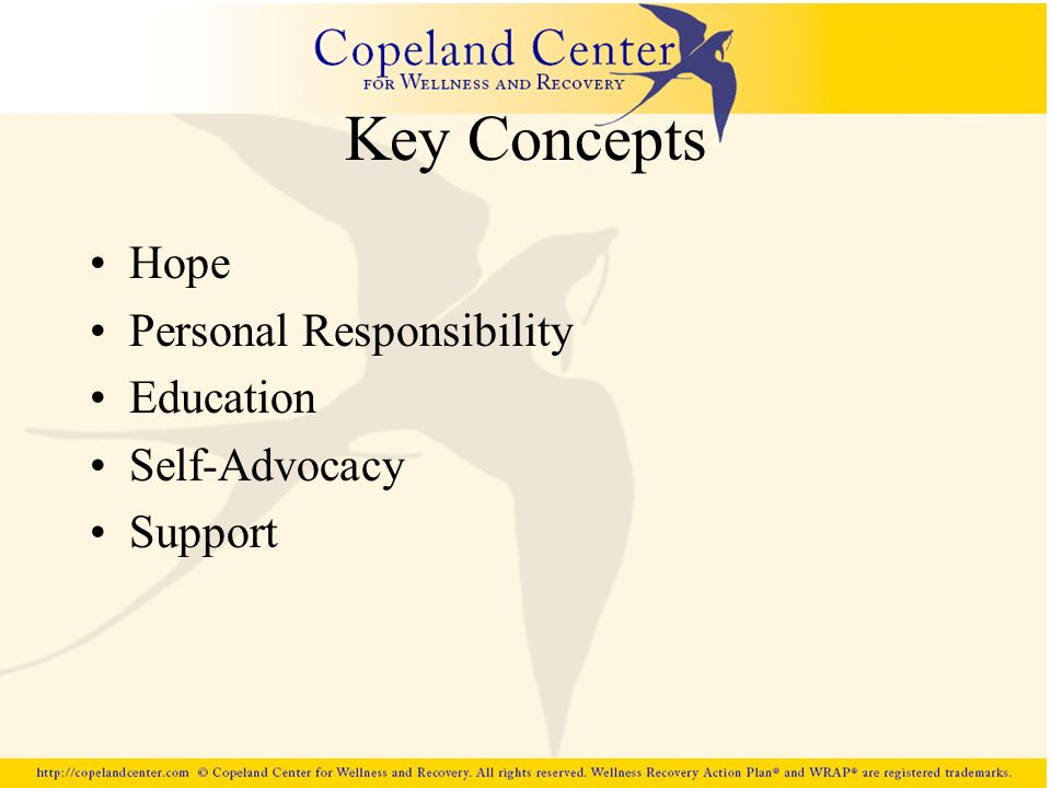 Key Concepts Hope Personal Responsibility Education Self-Advocacy