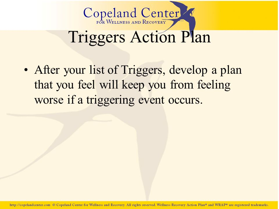Triggers Action Plan After your list of Triggers, develop a plan that you feel will keep you from feeling worse if a triggering event occurs.