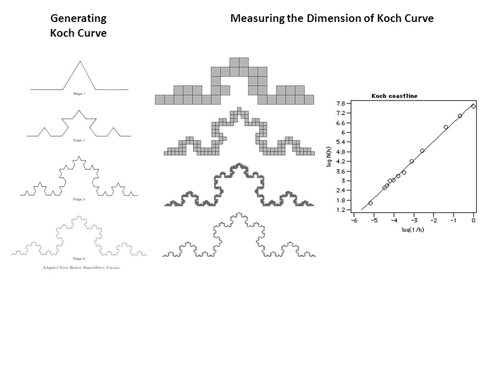Measuring the Dimension of Koch Curve