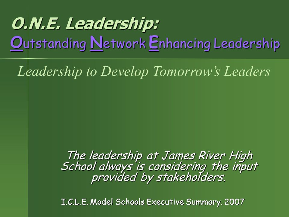 O.N.E. Leadership: Outstanding Network Enhancing Leadership