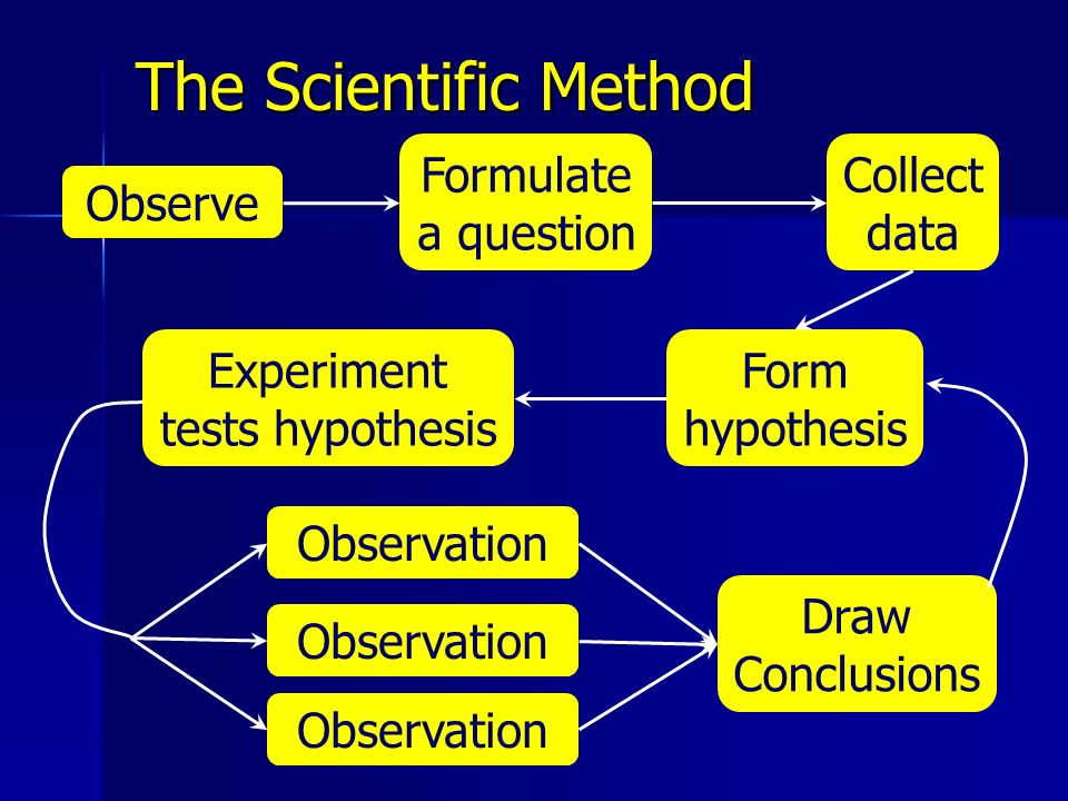 Experiment tests hypothesis