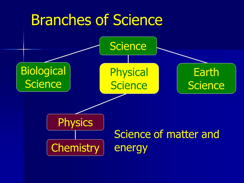 Branches of Science Science Biological Science Earth Science Physical