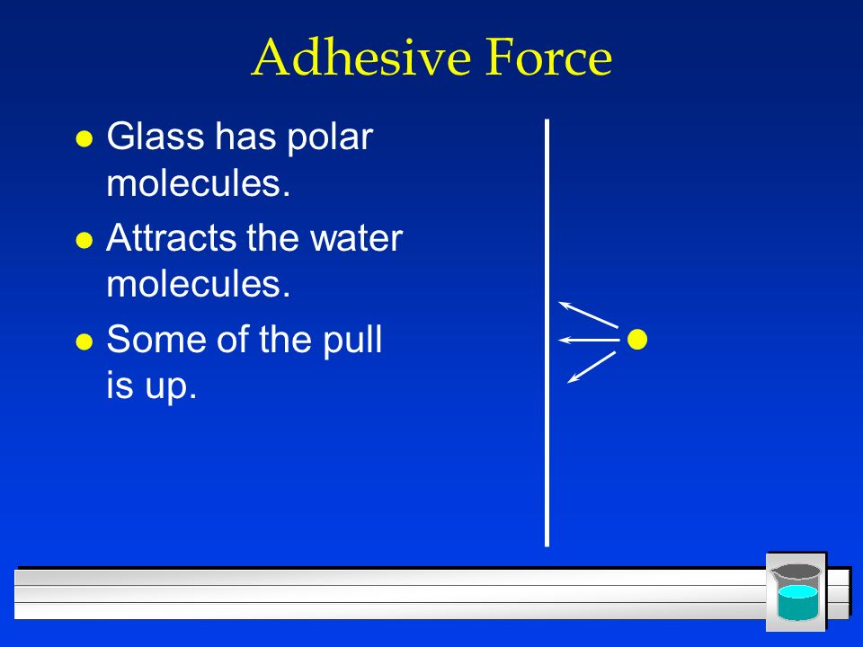 Adhesive Force Glass has polar molecules.