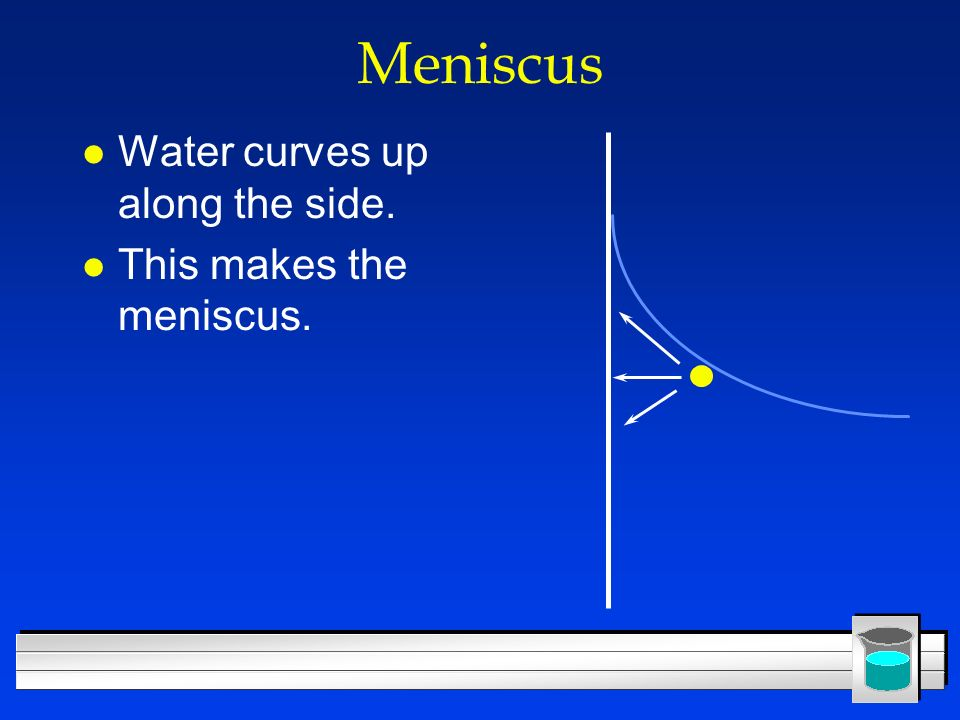 Meniscus Water curves up along the side. This makes the meniscus.