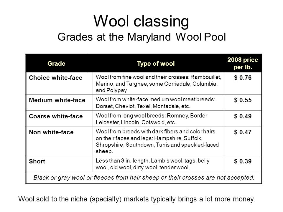 Wool classing Grades at the Maryland Wool Pool
