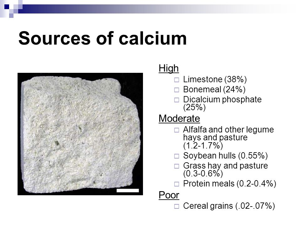 Sources of calcium High Moderate Poor Limestone (38%) Bonemeal (24%)