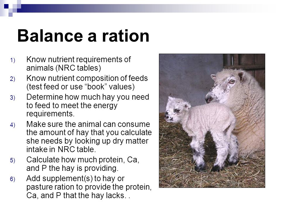 Balance a ration Know nutrient requirements of animals (NRC tables)