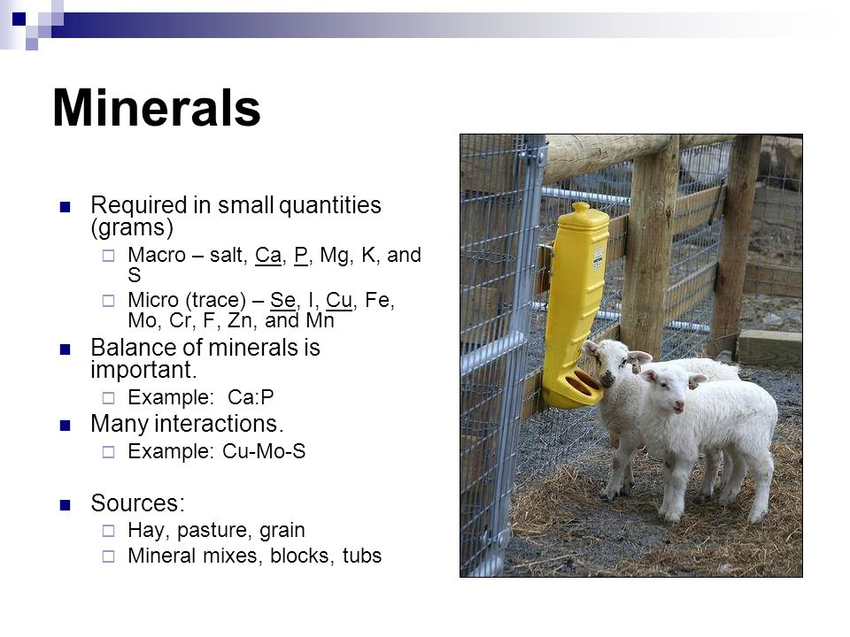 Minerals Required in small quantities (grams)