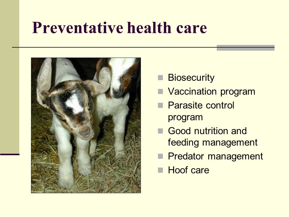Preventative health care