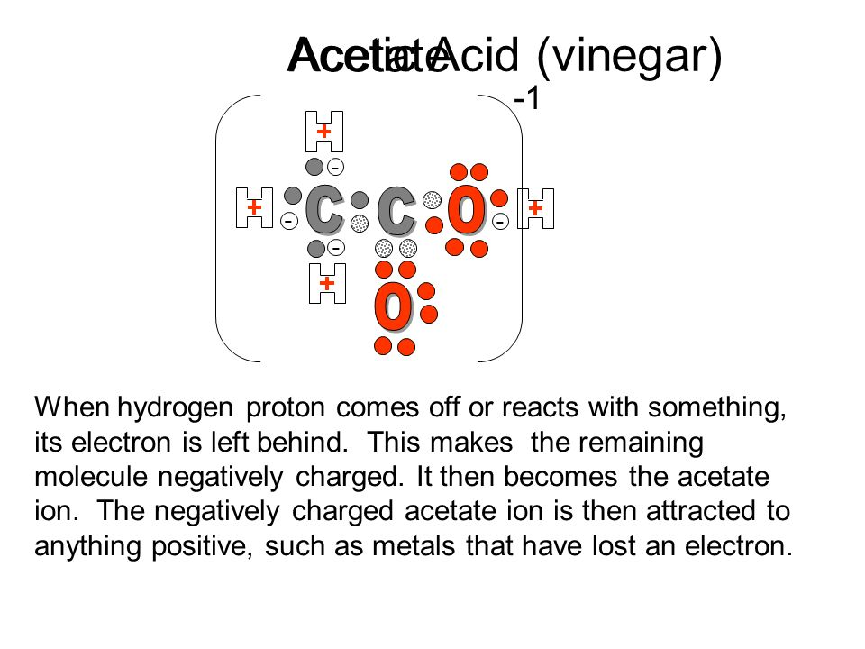 Acetic Acid (vinegar) Acetate C C O O -1