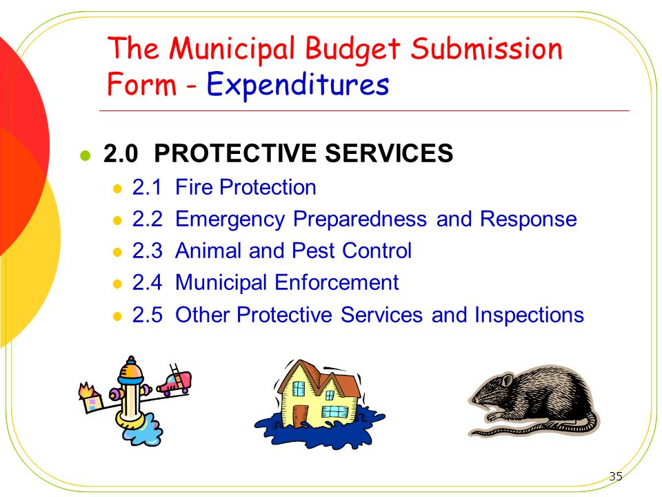 The Municipal Budget Submission Form - Expenditures