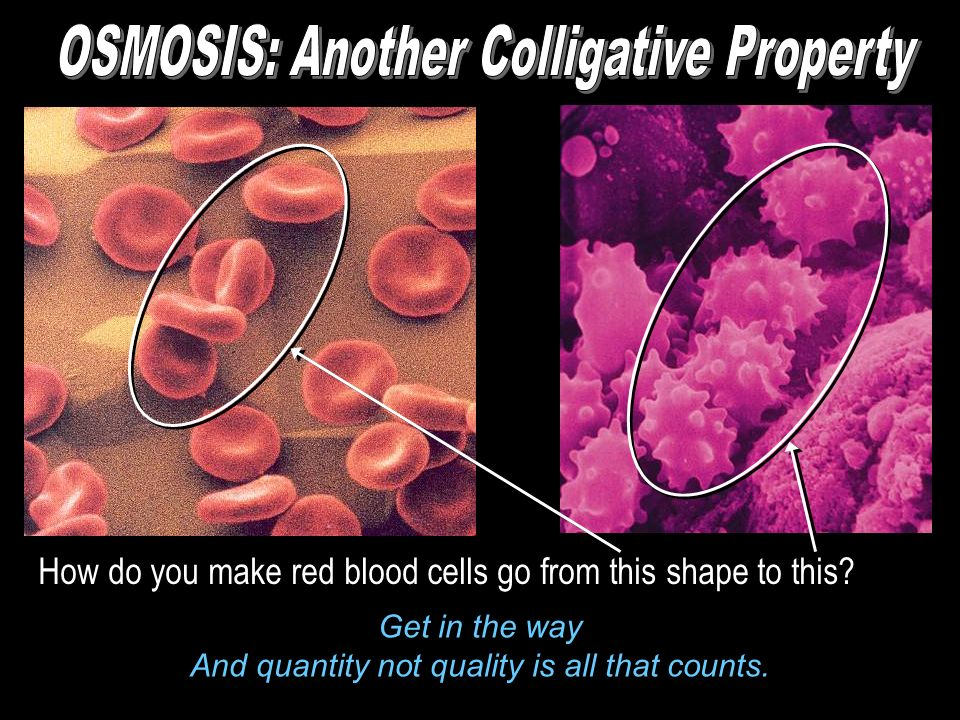 OSMOSIS: Another Colligative Property