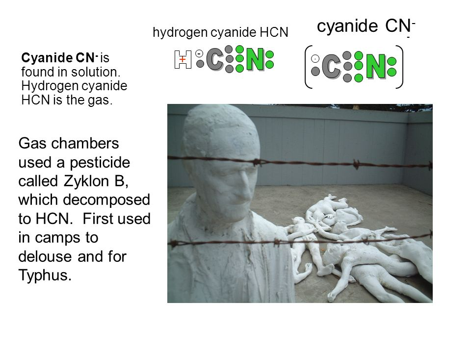 cyanide CN- hydrogen cyanide HCN. - Cyanide CN- is found in solution. Hydrogen cyanide HCN is the gas.