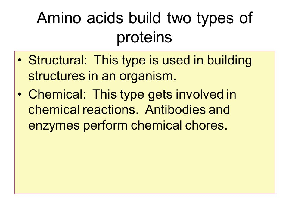 Amino acids build two types of proteins