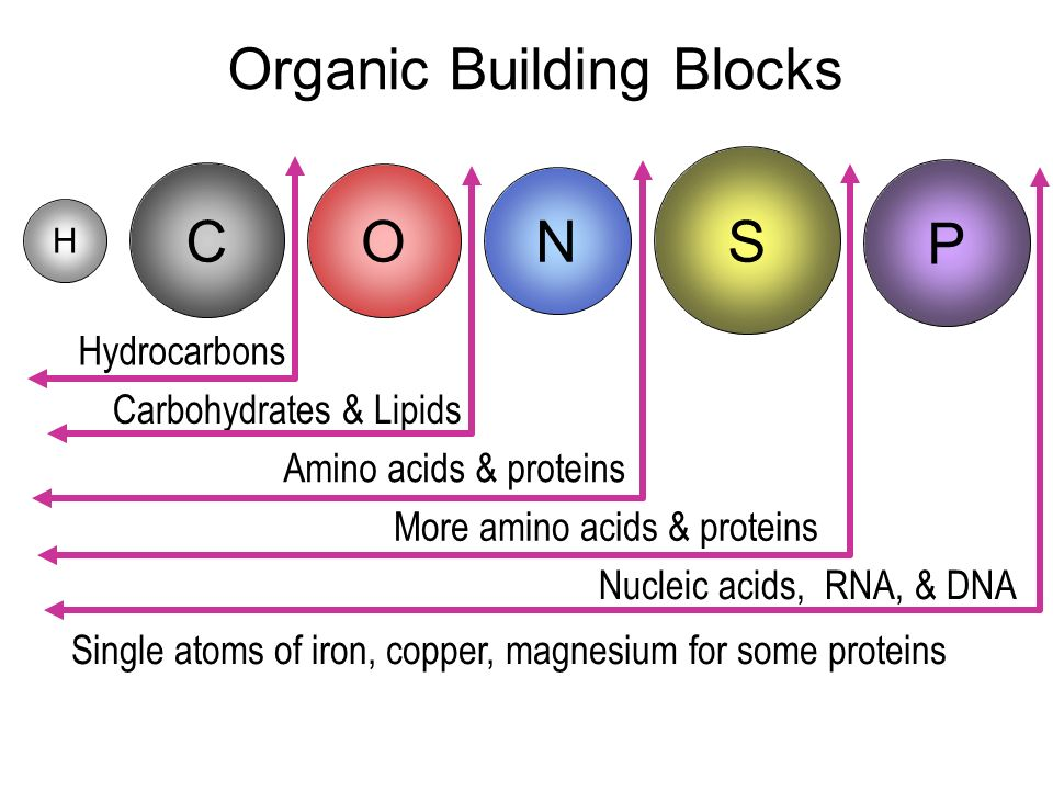 Organic Building Blocks