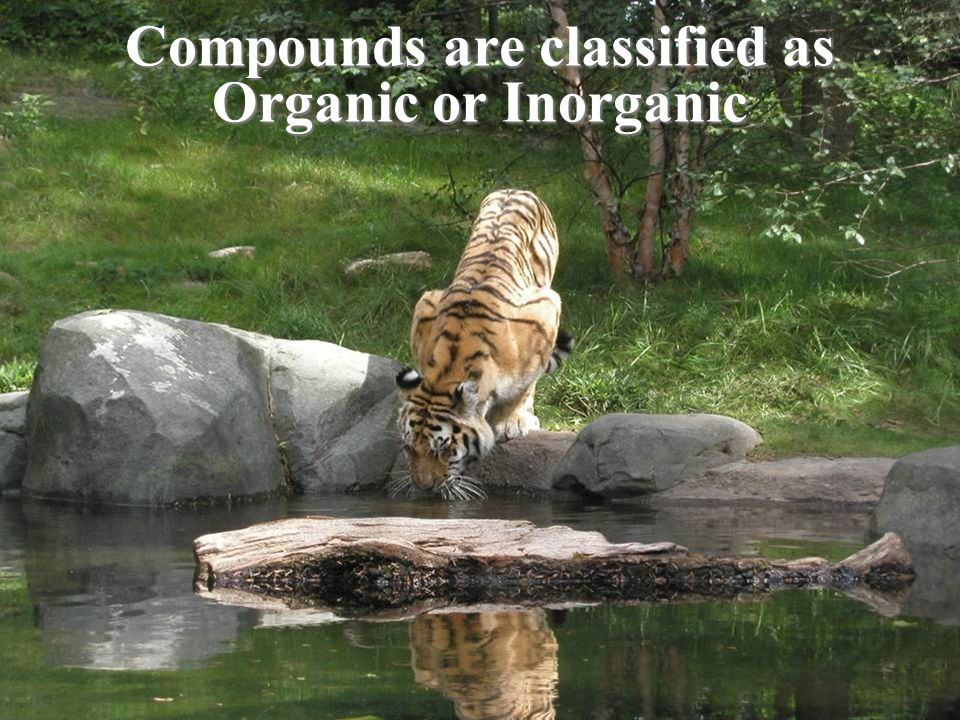 Compounds are classified as Organic or Inorganic