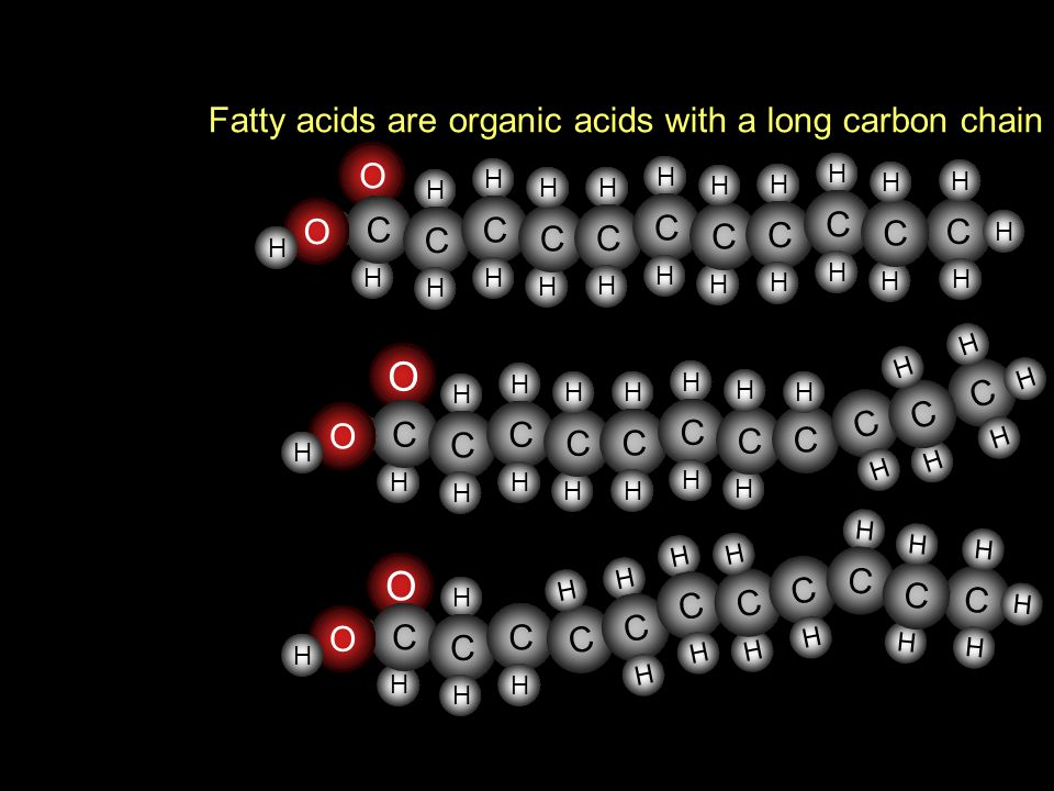 O O Fatty acids are organic acids with a long carbon chain O C C O C C